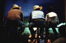 Cowboys at a rodeo
