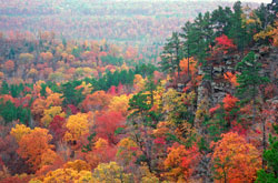 Fall colors in the Ozarks