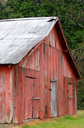 Mississippi barn